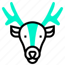 antelope, bug, cervid, deer, doe icon