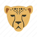 animal, cheetah, heads, run, wild icon