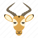 animal, deer, heads, horn icon