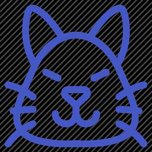 Animal, cat, kitten, pet icon - Download on Iconfinder