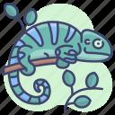 animal, chameleon, lizard, reptile icon