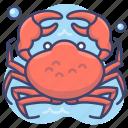 animal, crab, sea, seafood
