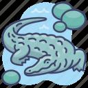 alligator, animal, crocodile, reptile icon