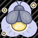 firefly, insert, animal, bug icon