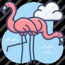 animal, bird, flamingo, flamingos icon