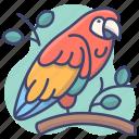 animal, bird, parrot, zoo icon