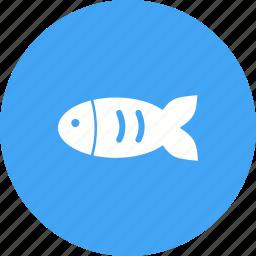 aquarium, fish, golden, goldfish, orange, pet, tank icon