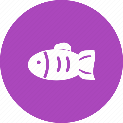 aquarium, fish, golden, goldfish, orange, pet, tank icon