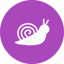 animal, cute, garden, shell, slow, small, snail icon