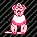 animal, dag, icon2, pink, retriver icon