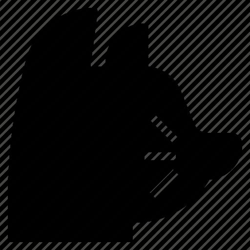 animal, breed, cat, kingdom, kitty, mammal, pet icon