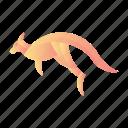 animal, fauna, jump, kangaroo, mammal, mascot, wild