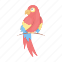 animal, bird, cute, parrot, toy, tropic icon