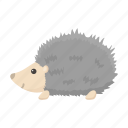 animal, cute, hedgehog, spiny, toy