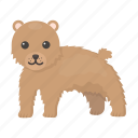 animal, bear, cute, predator, toy, wild icon