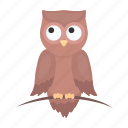 animal, bird, cute, owl, predator, toy icon