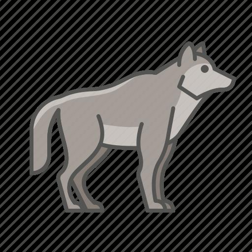animal, wild, wolf icon