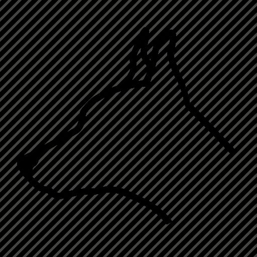 animal, dog, home, pet icon