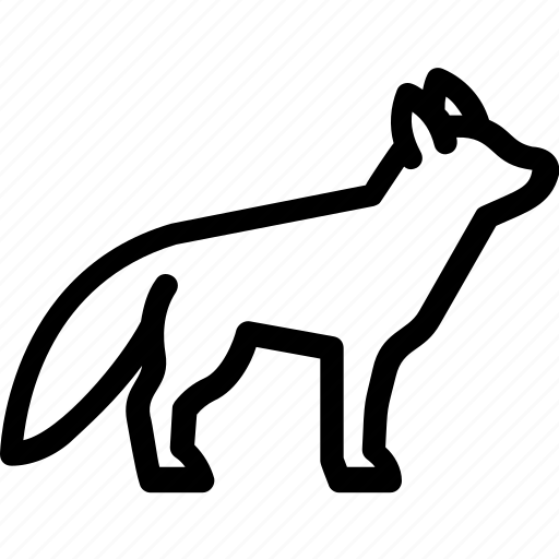 animal, coyote, fox, wild, wolf icon