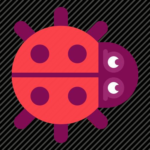 bug, ladybug icon