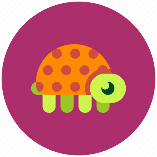 animal, home, slow, turtle icon