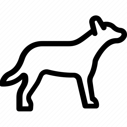 animal, coyote, fox, wild, wolf icon