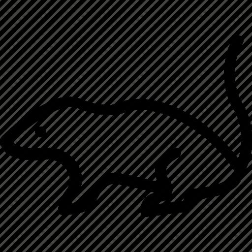 Jerboa, mouse, opossum, rat, shrew icon - Download on Iconfinder
