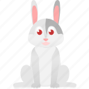 animal, baby, domestic, gray, hare, rabbt, wild icon