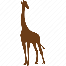 animal, animals, giraffe, leg, showtime, stand, zoo icon
