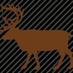 animal, animals, deer, wild animal, zoo icon