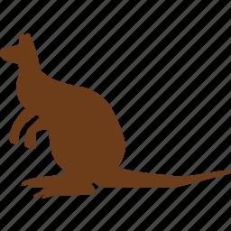 animal, animals, austria, kangaroo, wild animal, world, zoo icon