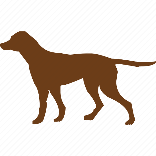 animal, animals, dog, park, pet, pet shop, puppy icon