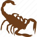 animal, bug, pet, scorpion, slider, spider, zoo icon