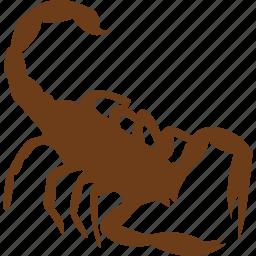 animal, bug, pet, scorpion, slider, spider, zoo icon