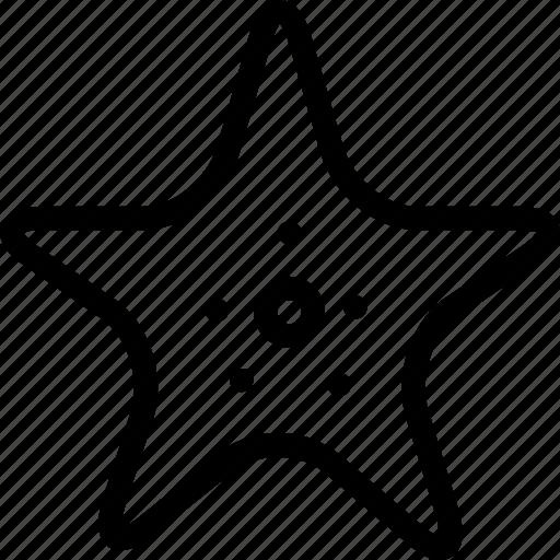 creative, grid, line, ocean, sea, sea-stars, shape, star, starfish icon