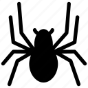 creative, eight-legs, grid, insect, shape, spider, spiderweb, venomous icon