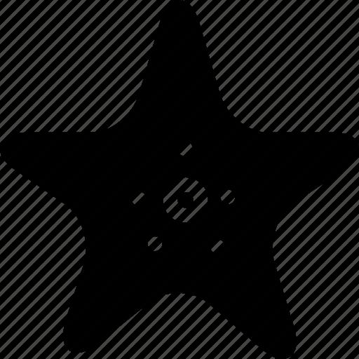 badge, best, creative, grid, ocean, sea, sea-stars, shape, star, starfish icon