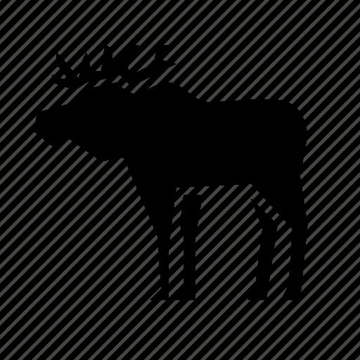 animal, animals, elk, nature, wild icon