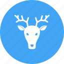 animal, deer, ears, face, faces, mammal, wildlife icon