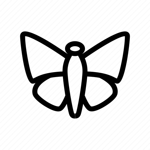 butterfly, glider butterfly, insect, lepidoptera, moth icon