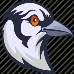 bird, columbidae, dove, pigeon, pigeon face icon