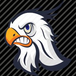 angry eagle, bird, eagle, golden eagle, raptor bird icon