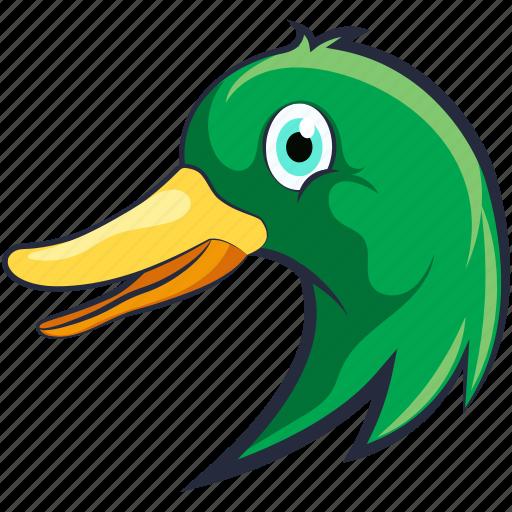 bird, domestic fowl, duck, goose, mallard duck icon