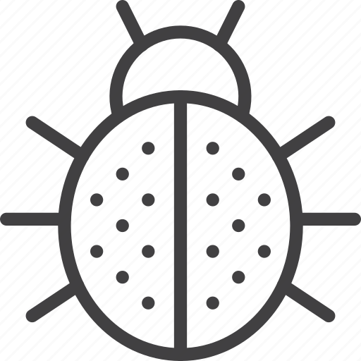 beetle, bug, ladybug icon