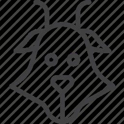 capricorn, goat, head icon