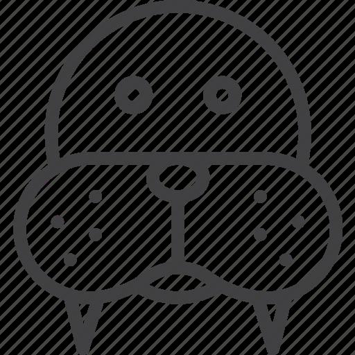 head, morse, walrus icon