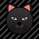 animal, cat, cute, feline, kitten, kitty, pet icon