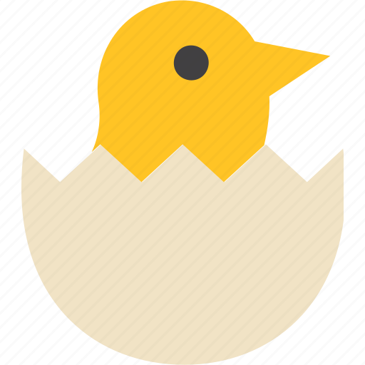 Chick, egg, bird, animal icon - Download on Iconfinder