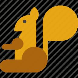 animal, kangaroo, squirrel icon