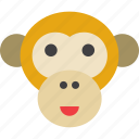 animal, ape, chimpanzee, monkey icon